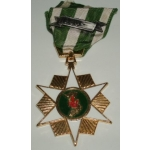 RVN Campaign Medal